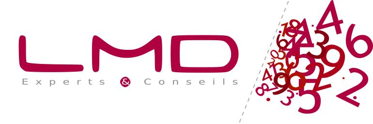 LMD EXPERTS & CONSEILS